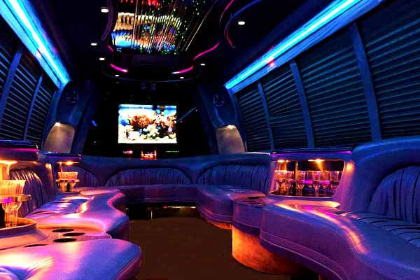 18 passenger party bus rental jacksonville