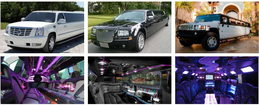 Wedding Transportation Party Bus Rental Jacksonville