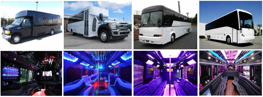 Wedding Transportation Party Buses Jacksonville